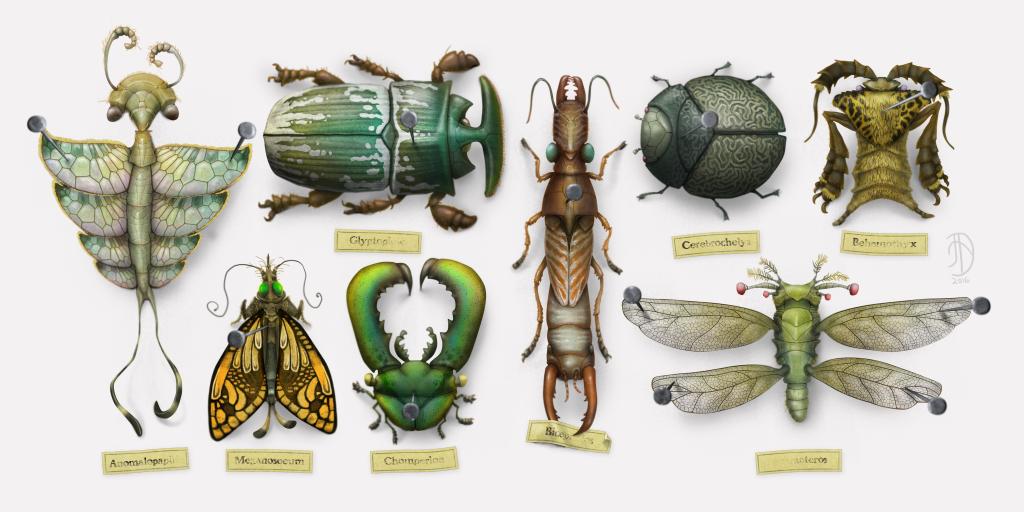entomojo_2016
